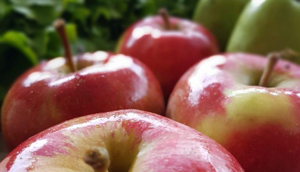 Oogst_appels_HBW