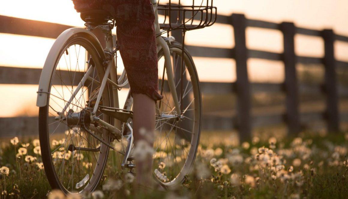 bicycle-biker-biking-1548771