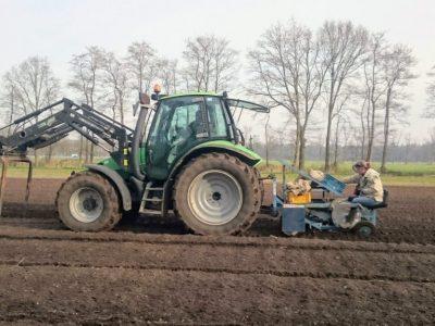 Aardappels poten HBW