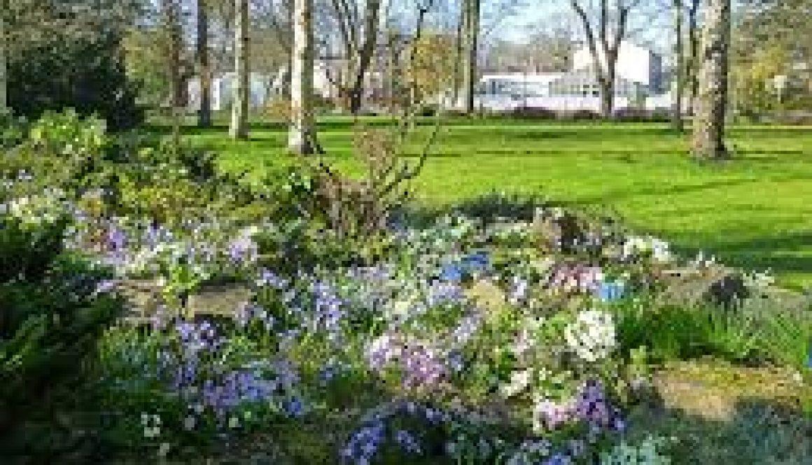 Botanische Tuin Delft